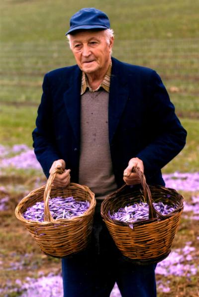 Silvio Salvatore Sarra